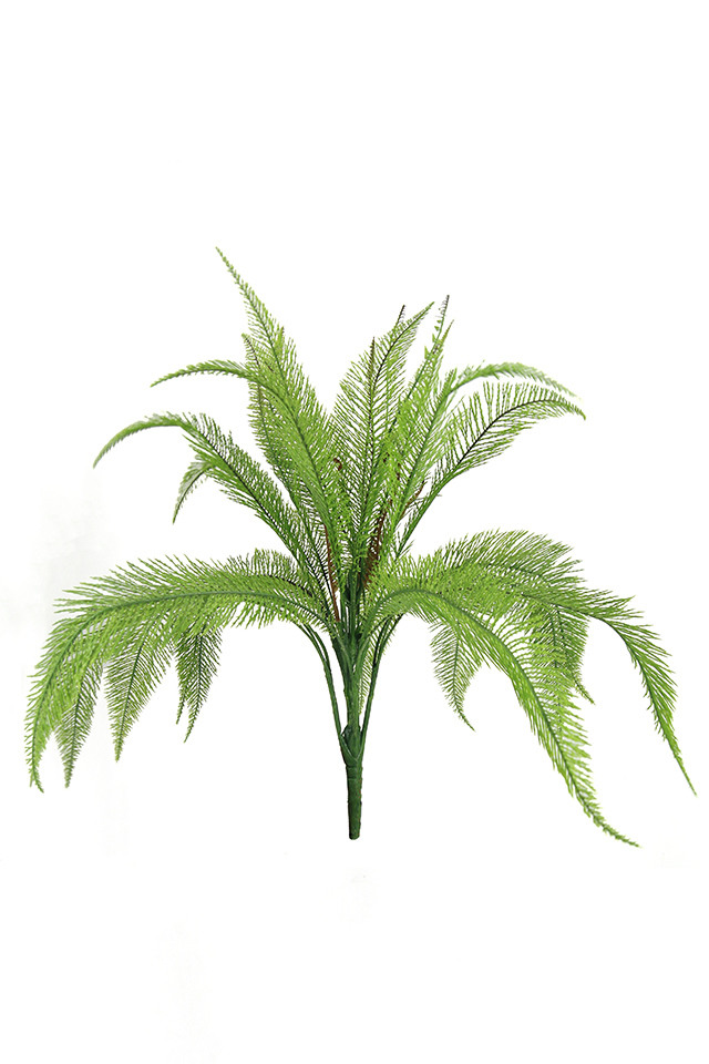 GGREENERY GGREENERIES GGREENERIE DELUXE DELUXES DELUX BOSTON BOSTONS FERN FERNS LEAVES LEAFE LEAVE LEAF LEAFS 77CM 77CMS ARTIFICIAL ARTIFICIALS GREENERY GREENERIES GREENERIE NEEDLE NEEDLES BUSH BUSHES X LVS LV
