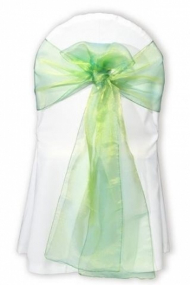 CHAIR CHAIRS SASH SASHES SASHE TIE TIES TY BOW BOWS TABLE CENTRE TABLE CENTRES RUNNER RUNNERS SNOW SNOWS ORGANZA ORGANZAS 2TONE 2TONES 27X300CM 27X300CMS SSASH SSASHES ORG ORGS TONE TONES